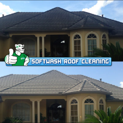 SoftWash Roof Cleaning BEFORE & AFTER by Green Tiger SoftWash